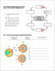 Endocrine System Review Worksheet