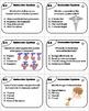 Endocrine System Task Cards