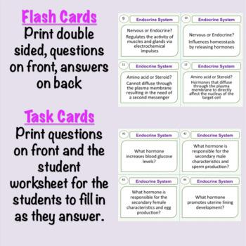 Endocrine System Task Cards: Glands and Hormones