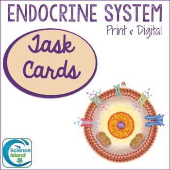 Endocrine System Task Cards with PowerPoint Review