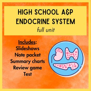 Endocrine System Unit