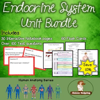 Endocrine System Unit Bundle