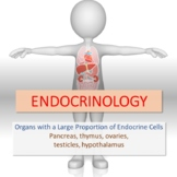 Endocrinology - Pancreas, thymus, ovaries, testis, hypothalamus