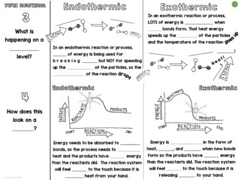 Endothermic Exothermic Cornell Doodle Notes with Powerpoint