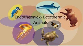 Endothermic and Ectothermic Animals Minilesson w/ SmartBoard