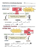 Endothermic and Exothermic reactions visual organizer/worksheet