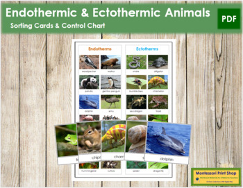 Endothermic or Ectothermic Animals