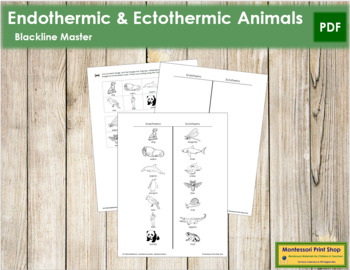 Endothermic or Ectothermic Animals - Blackline Masters