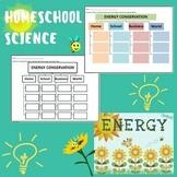 Energy Conservation Graphic Organizer Worksheet