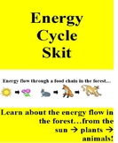 Energy Cycles in the Forest: plants and animals