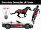 Energy: Energy, Work, Power, Efficiency, Energy Resources