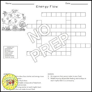 Energy Flow Crossword Puzzle