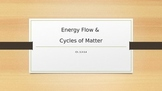 Energy Flow & Cycles of Matter
