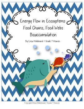 Energy Flow, Food Webs, and Food Chains