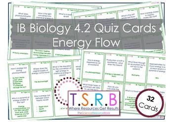Energy Flow (IB Bio 4.2)