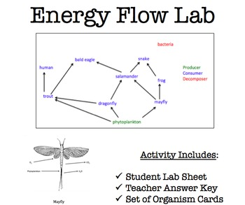 Energy Flow Lab