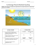 Energy Flow - Lesson Segment 1.2 [NGSS 3 Course Model] The