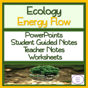 Energy Flow: PowerPoint, Student Guided Notes, Teacher Notes, Worksheet