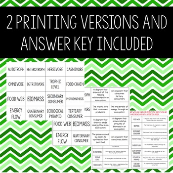 Energy Flow Review Activity