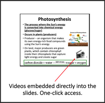 Energy Flow in Ecosystems -Ecology PowerPoint Lesson, Notes and Activity Package