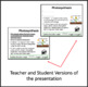 Energy Flow in Ecosystems Lesson - Google Slides and Distance Learning Ready