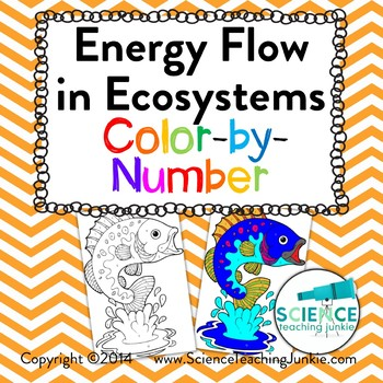 Energy Flow In Ecosystems Color By Number By Science Teaching Junkie Inc