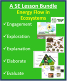 Energy Flow in Ecosystems - Complete 5E Lesson Bundle