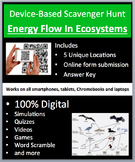 Energy Flow in Ecosystems - Device-Based Scavenger Hunt Activity -Join the Hunt!
