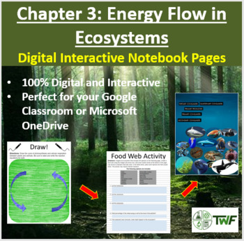 Energy Flow in Ecosystems - Digital Interactive Notebook Pages