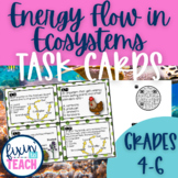 Energy Flow in Ecosystems Task Cards {Food Chains & Food Webs}