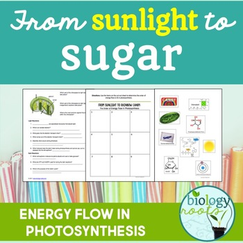 Photosynthesis reading teaching resources teachers pay teachers photosynthesis energy flow from sunlight to sugar fandeluxe Choice Image