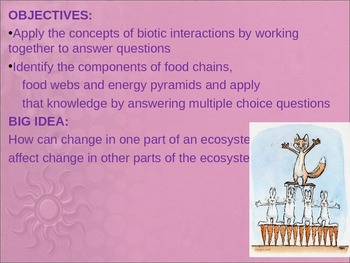 Energy Flow in an Ecosystem PowerPoint Lesson