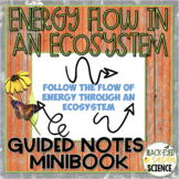 Energy Flow in an Ecosystem--Guided Notes MiniBook NGSS MS-LS2-3