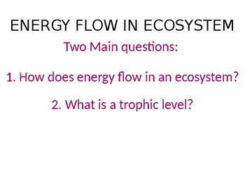 Energy Flow of the Ecosystem PPT