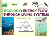 ECOLOGY: Energy Flow, Trophic Levels, Food Chains, Food Webs PPt