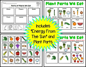Energy From the Sun / Living vs. Non-living / Parts of a Plant Pack for K and 1