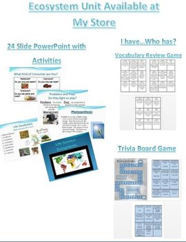 Energy Pyramid Activity for Ecosystems, Food Chains, and Food Webs
