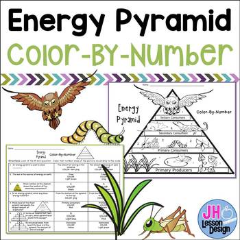Energy Pyramid Worksheet Teachers Pay Teachers