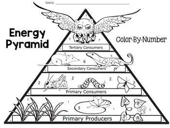 Energy Pyramid Color-By-Number by JH Lesson Design | TpT