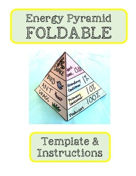 Pyramid Foldables Template Worksheets Teaching Resources Tpt