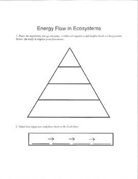 Energy Pyramid Lab