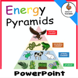 Energy Pyramid- PowerPoint Lesson with Warm-up and Cornell Notes