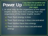 Energy Pyramid Powerpoint