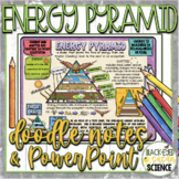 Energy Pyramid Doodle Notes + PowerPoint