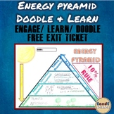 Energy Pyramid- Trophic Levels (Producer & Consumer) Doodle & Learn Note