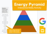 Energy Pyramid - drag-and-drop terms in  Google Slides   REMOTE LEARNING