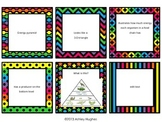 Energy Pyramid/Food Web Review Task Cards