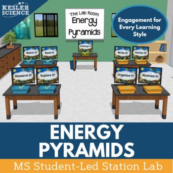 Energy Pyramids Student-Led Station Lab