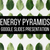 Energy Pyramids Google Slides Presentation