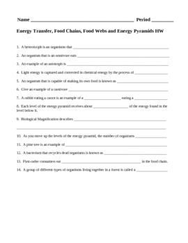 Energy Transfer Food Chains Food Webs And Energy Pyramids Hw By